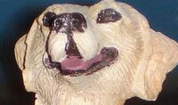 Croppeddog